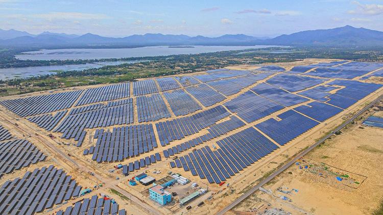 Bamboo Capital khánh thành nhà máy năng lượng mặt trời Phù Mỹ