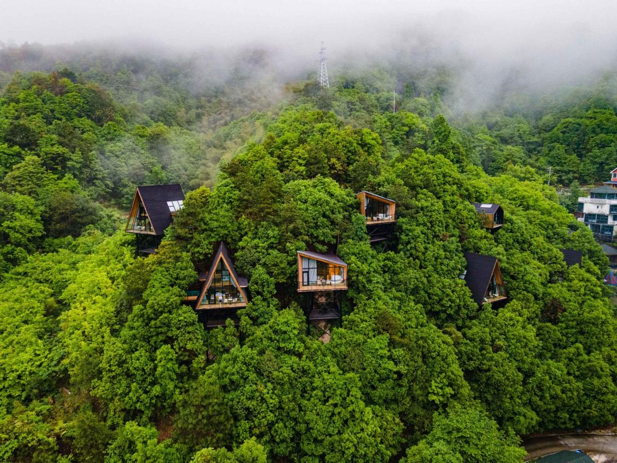 Khách sạn 'làm tổ' trên cây giữa rừng